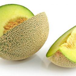 Cara Menyemai Benih Melon