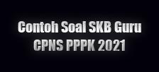 haidunia.com_contoh soal skb guru CPNS PPPK 2021
