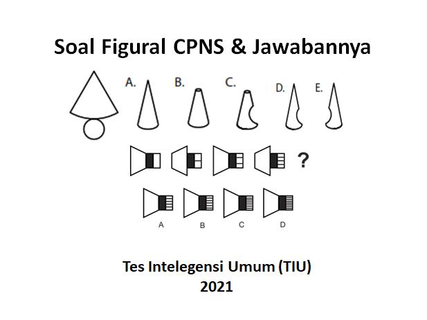 Soal Figural Cpns 2021 Dan Jawabannya Contoh Tiu Hots Haidunia
